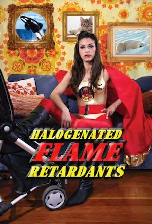 Halogenated-Flame-Retardants300
